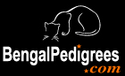 bengalpedigrees